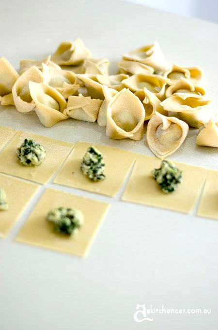 How to make tortellini and entertain friends: goats cheese and silverbeet tortellini